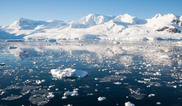 30112016-arktik