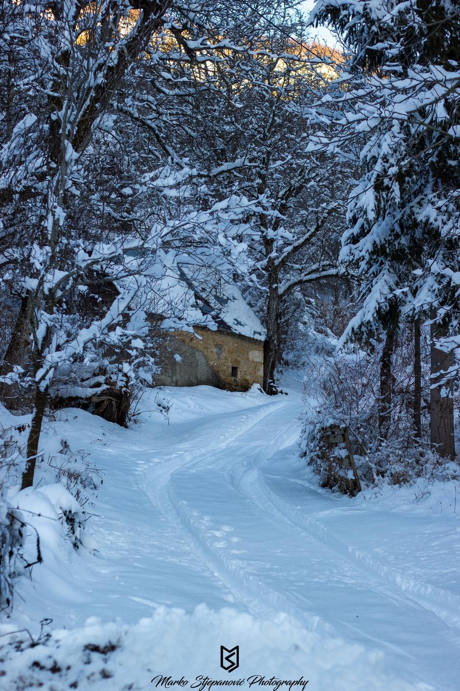 06012016-snijeg-priroda3