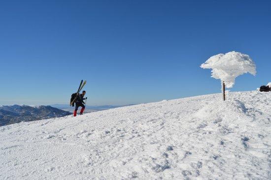 24012017-vran-planina11