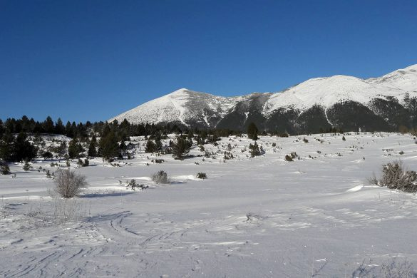 vran-planina