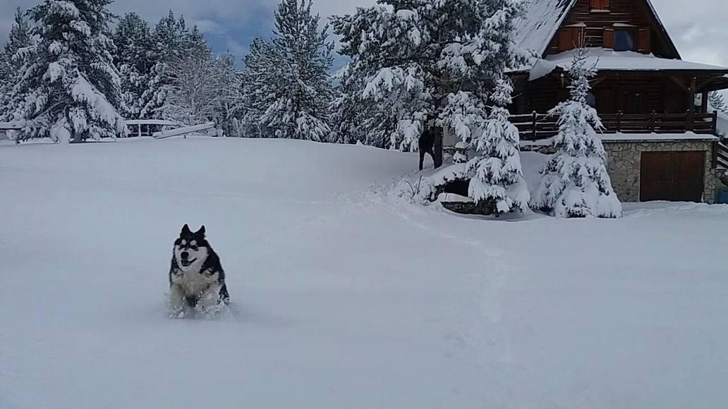 19042017-blidinje-snijeg113