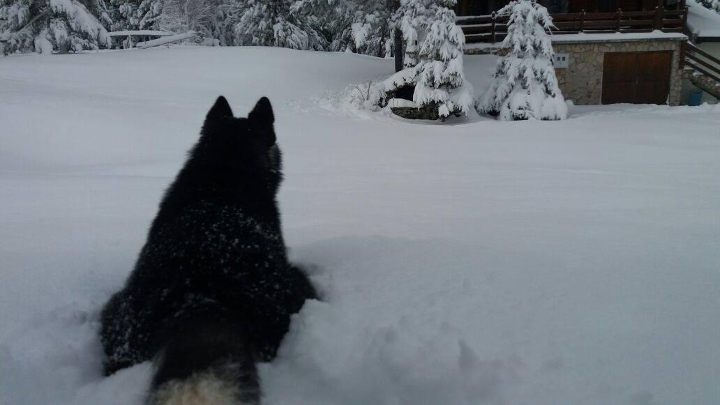 19042017-blidinje-snijeg4