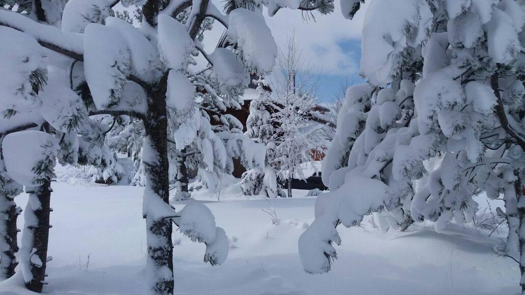 19042017-blidinje-snijeg9