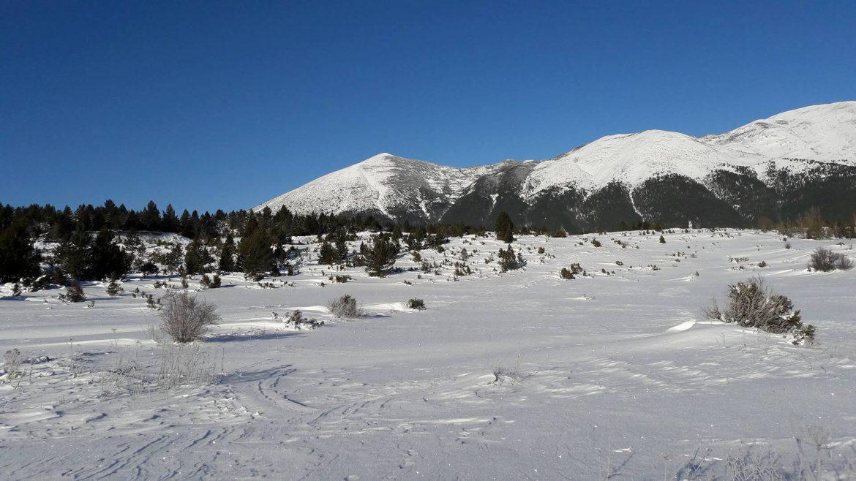 vran-planina-1170x658