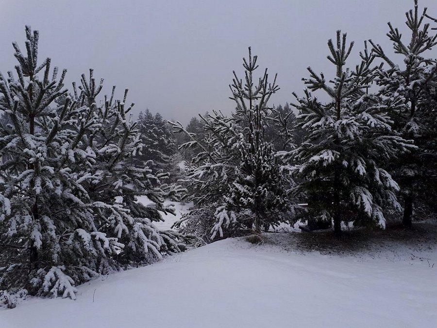 09122017-blidinje-snijeg