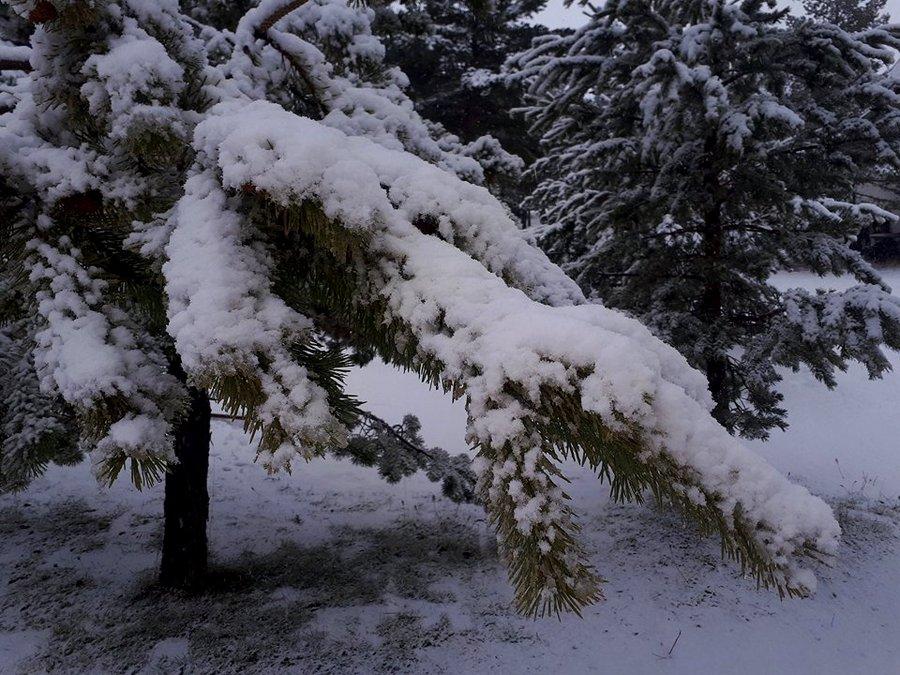 09122017-blidinje-snijeg2
