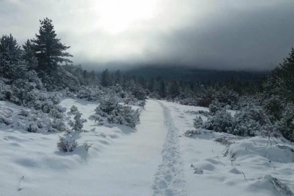 20012018-snijeg-blidinje