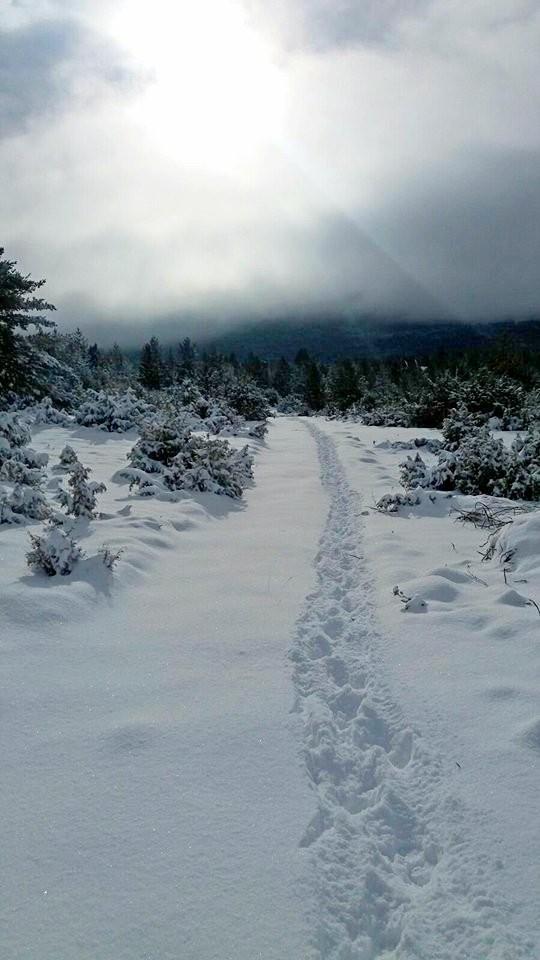 20012018-snijeg-blidinje03