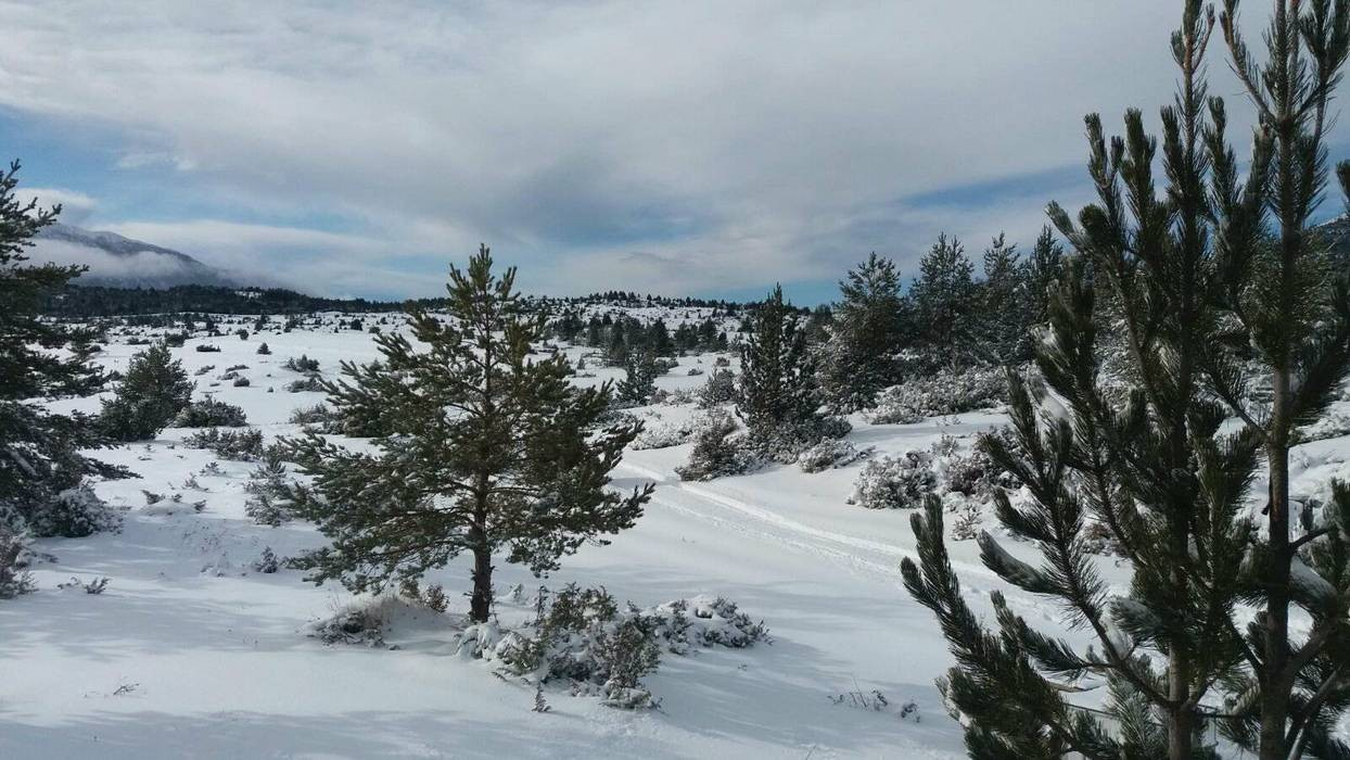 20012018-snijeg-blidinje04