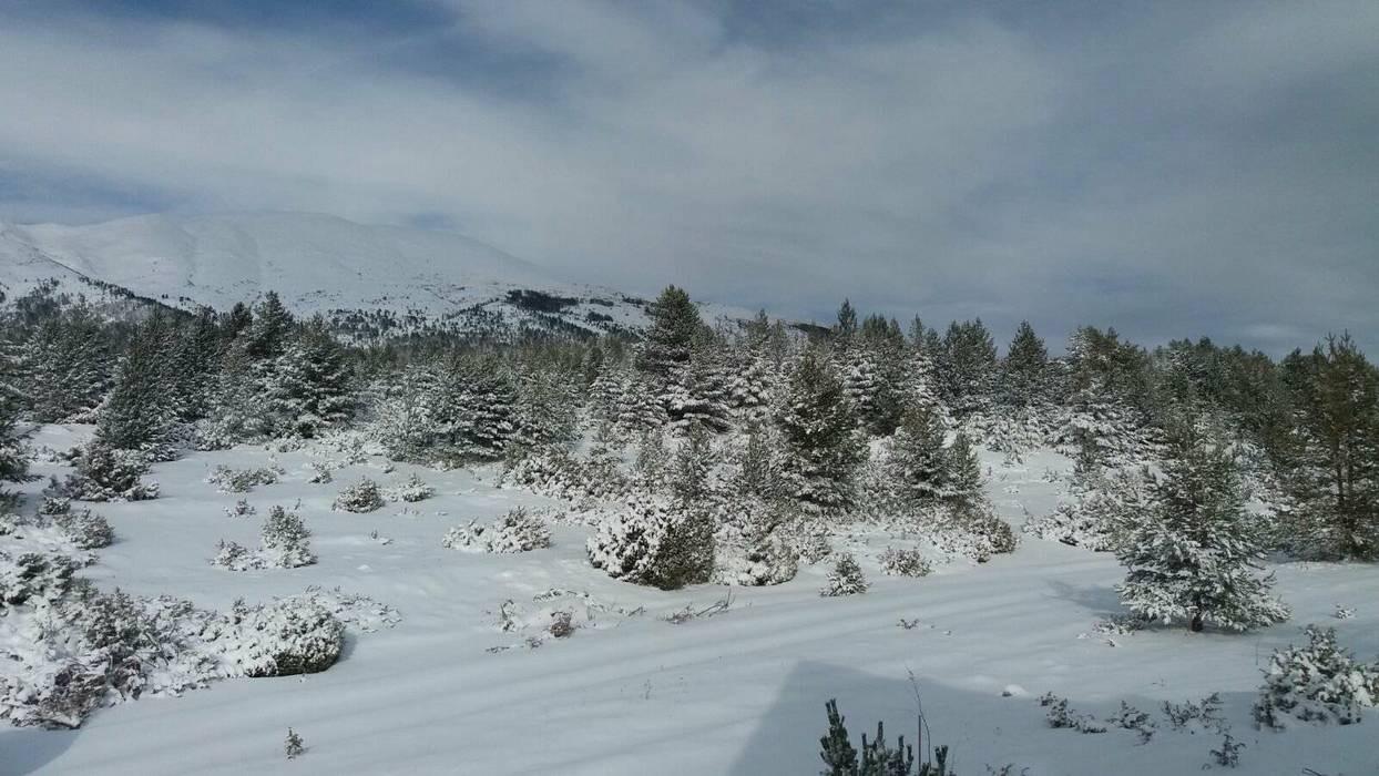 20012018-snijeg-blidinje05