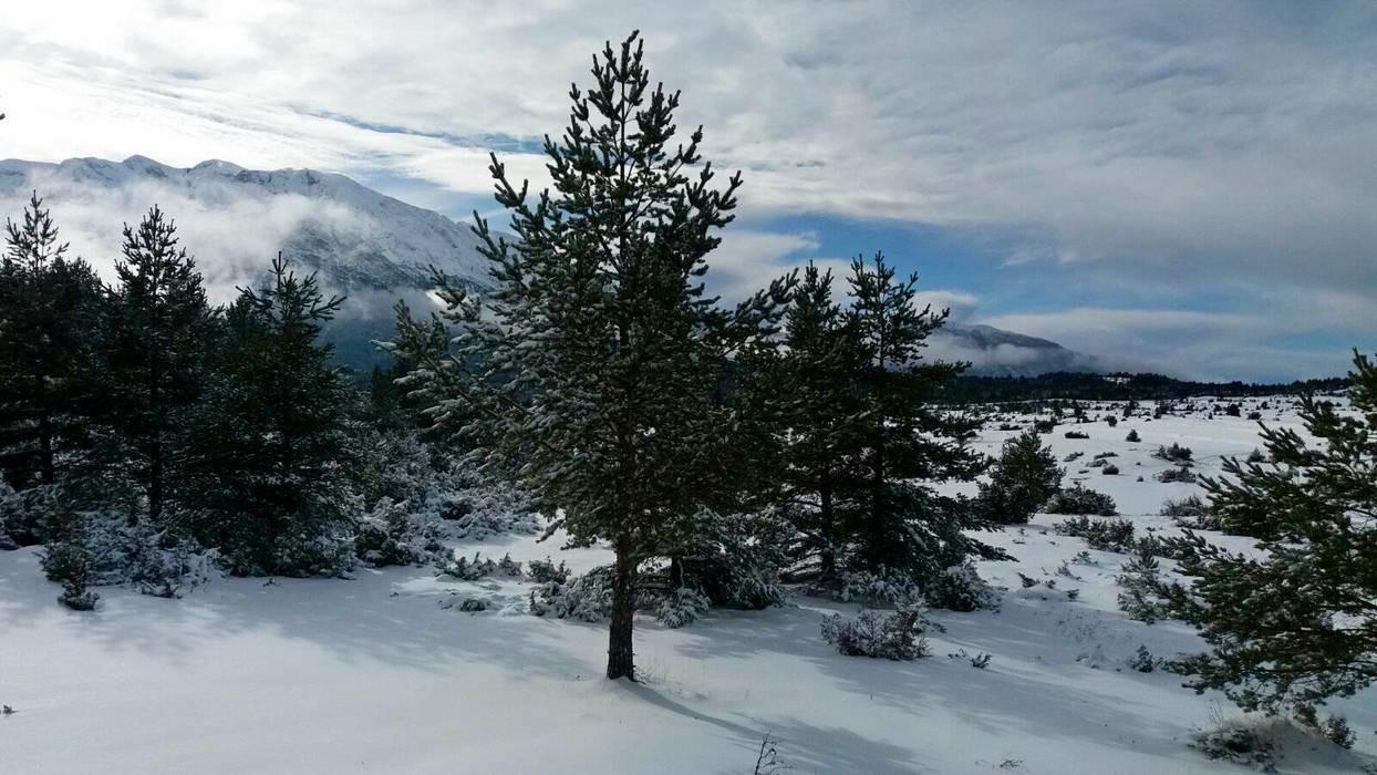 20012018-snijeg-blidinje06