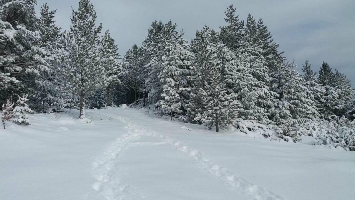 20012018-snijeg-blidinje10