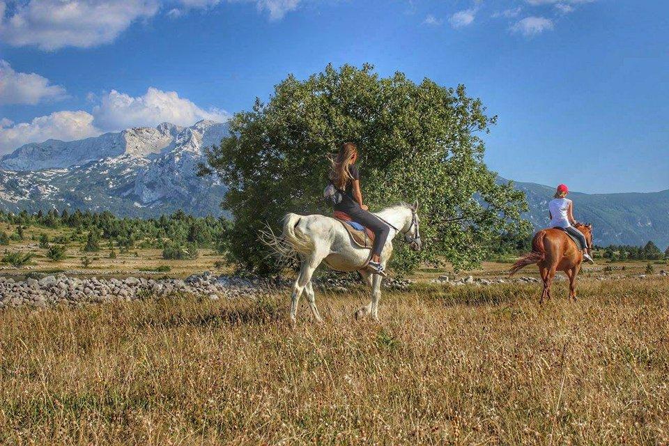 24042018-horse-ranch-blidinje