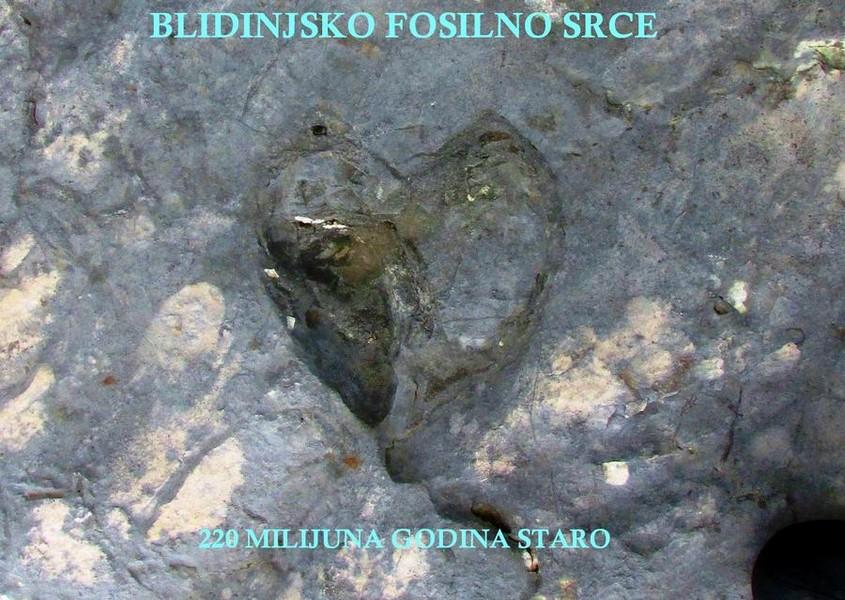 07082018-blidinje-fosil1