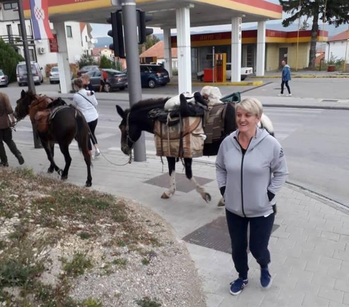 15092018-mule1